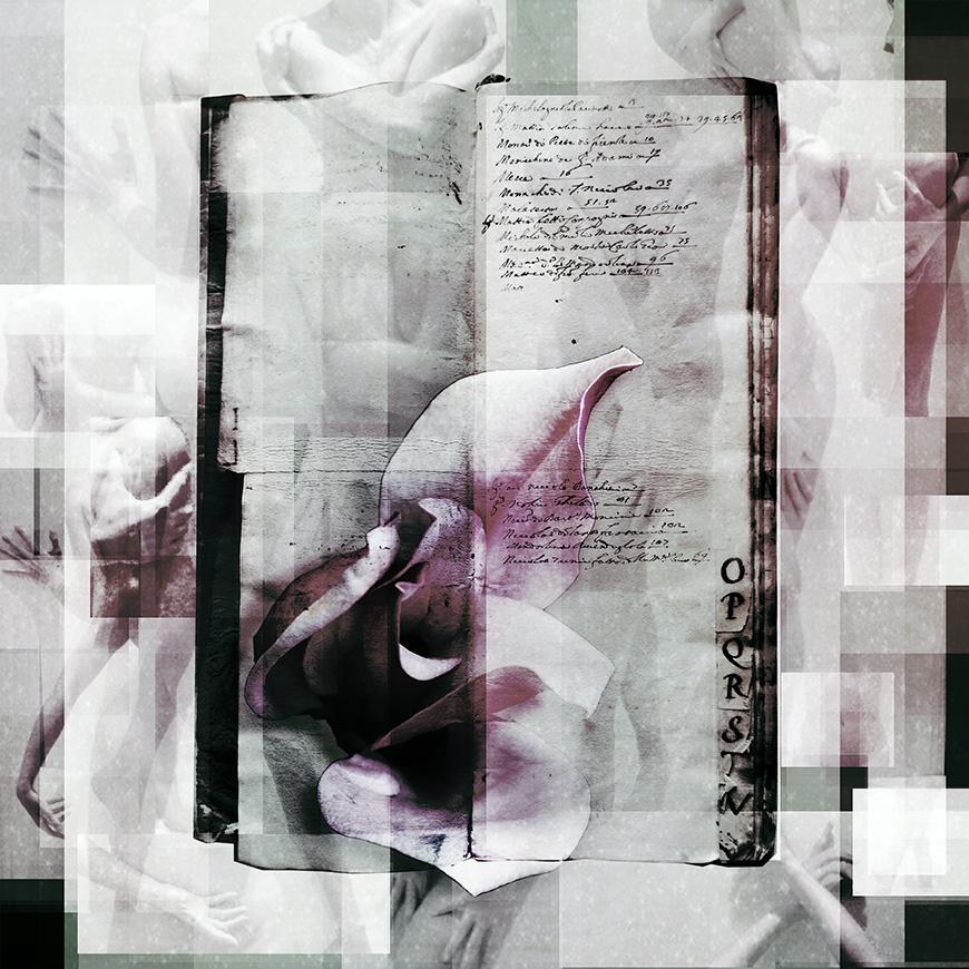 Fragment O: Osceno - Love's Obscenity