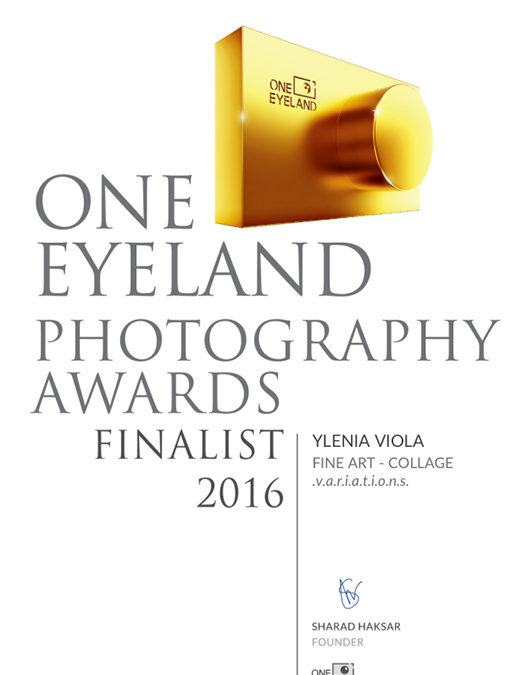 2016 – One EyeLand Photography Award – Finalist