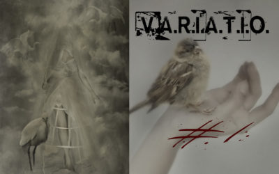 .V.A.R.I.A.T.I.O. # 1 – Each journey begins with a small, single step.