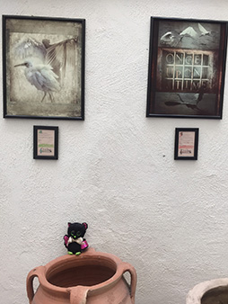 Rivoli Città Fotografica - Exhibition