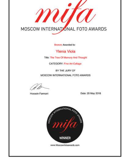 MIFA Winner Certificate